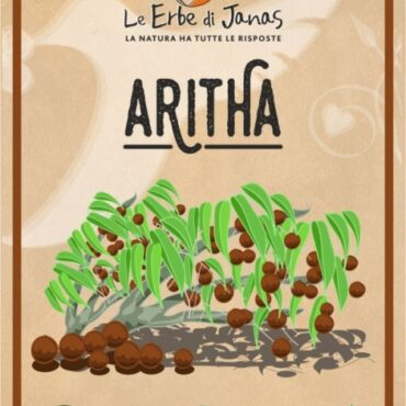 ARITHA (REETHA)- NOCE DEL SAPONE LE ERBE DI JANAS