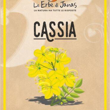 CASSIA (HENNÈ NEUTRO) BIO LE ERBE DI JANAS