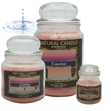 CANDELA PICCOLA IN CERA VEGETALE EMOTION – NATURE CANDLE